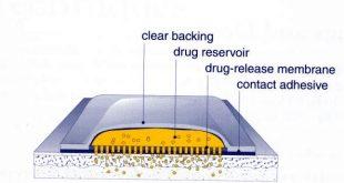 Piperine, Peningkat Penetrasi Alami Sediaan Transdermal