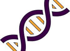 Zolgensma, Terapi Gen Termahal di Dunia (2.1 Juta USD) Disetujui FDA